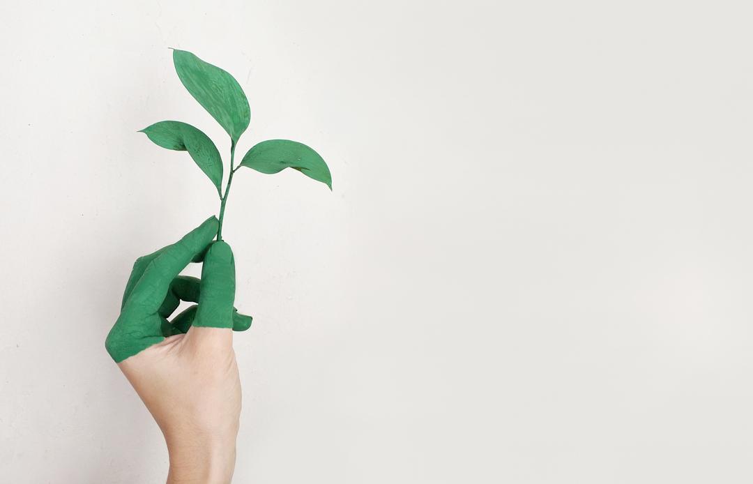 Medio Ambiente y Sostenibilidad en el punto de mira de la industria del plástico