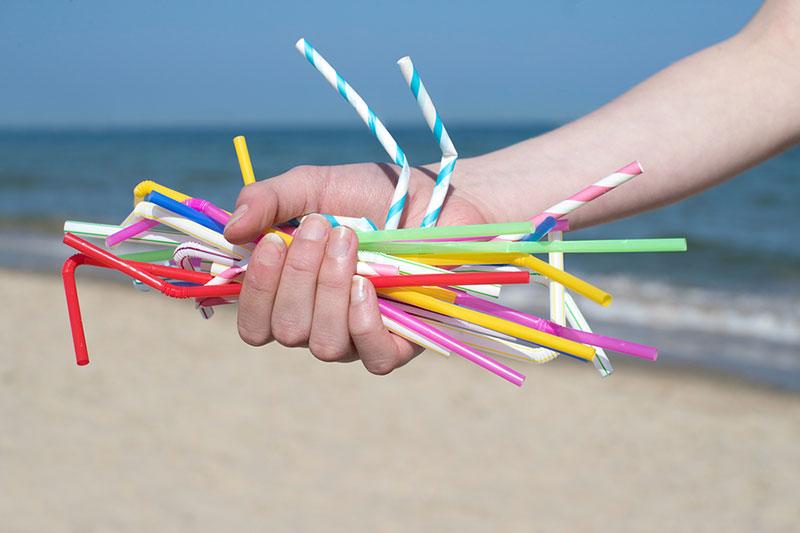 efectos negativos de los plásticos