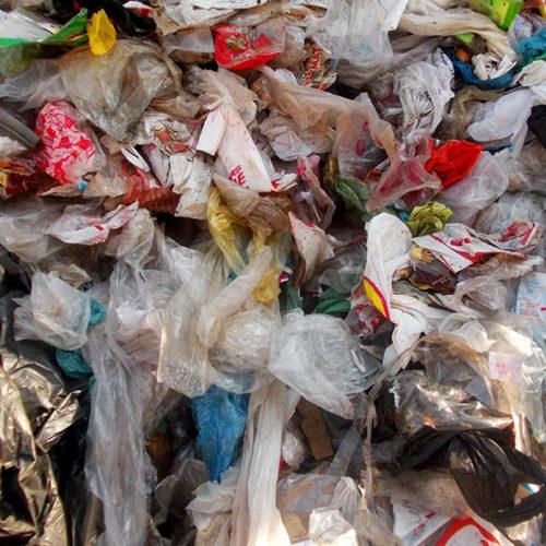 Bioplástico: tendencias para un packaging sostenible