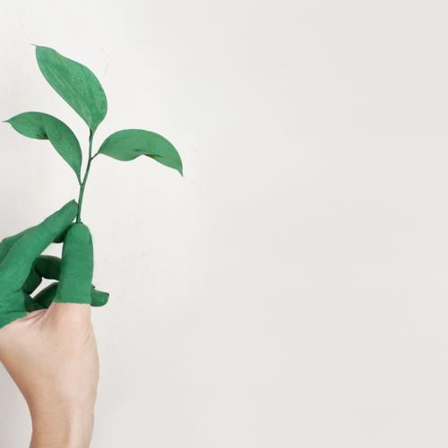 La química y el plástico hacia un futuro más verde