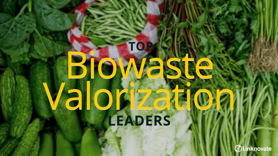 Biowaste Valorization Leaders you Must Know
