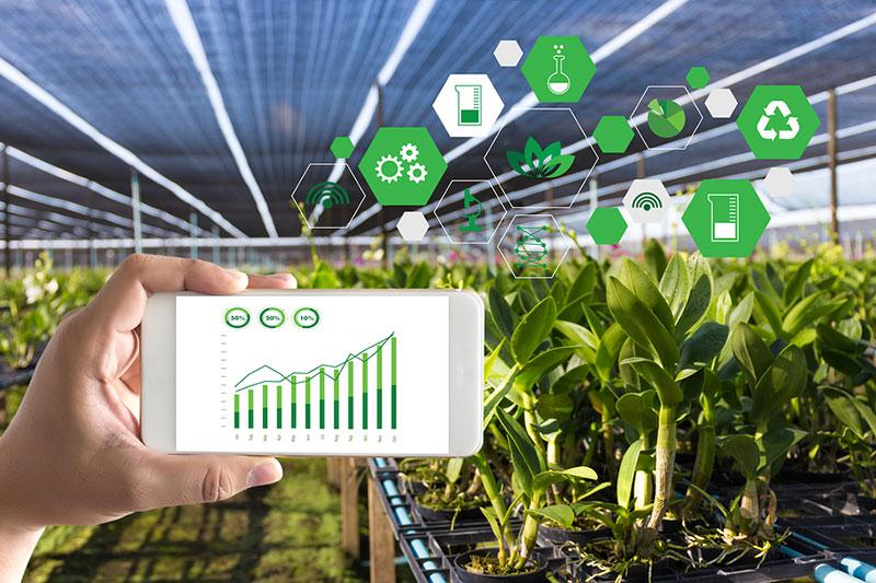 química aplicada a la agricultura