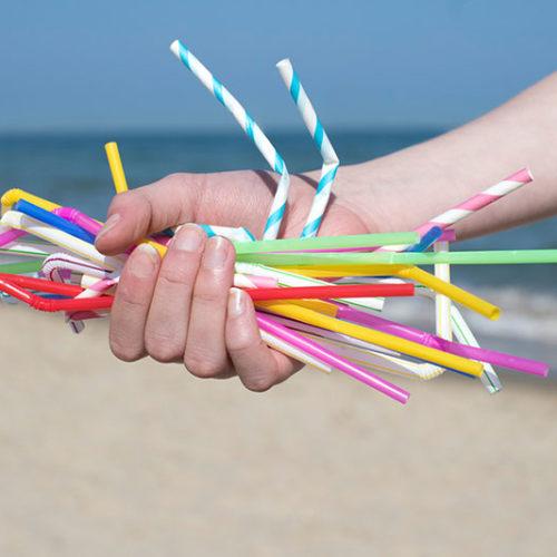 Medidas en contra de los efectos negativos del plástico