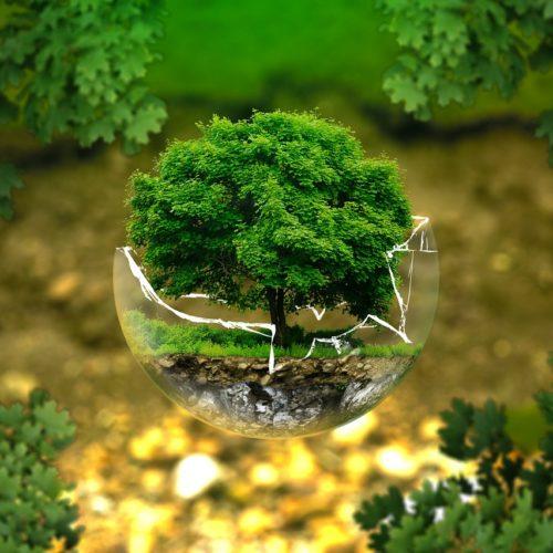 Día Mundial del medio ambiente | 3 cambios en la industria para favorecer al medio ambiente